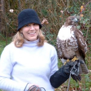 "(2005) Stacey with Graccia (prounced GRA-shuh) the red-tailed hawk who is a key character in the book ""Gracious Wild""."