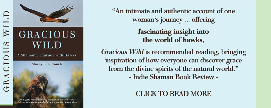 gracious wild book by stacey couch