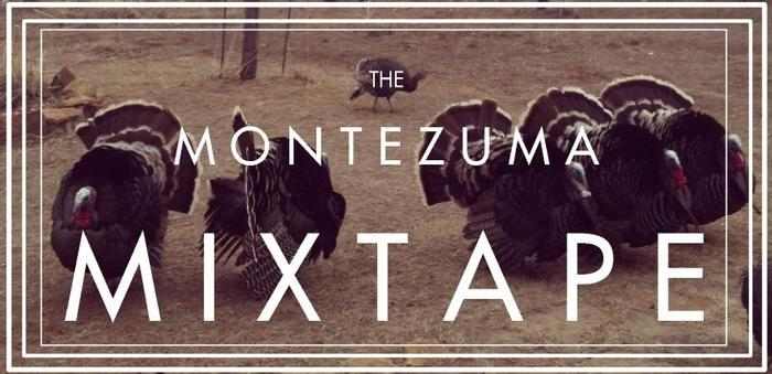 stacey couch on montezuma mixtape