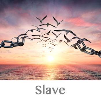 slave archetype